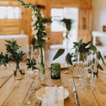 Plants and decor